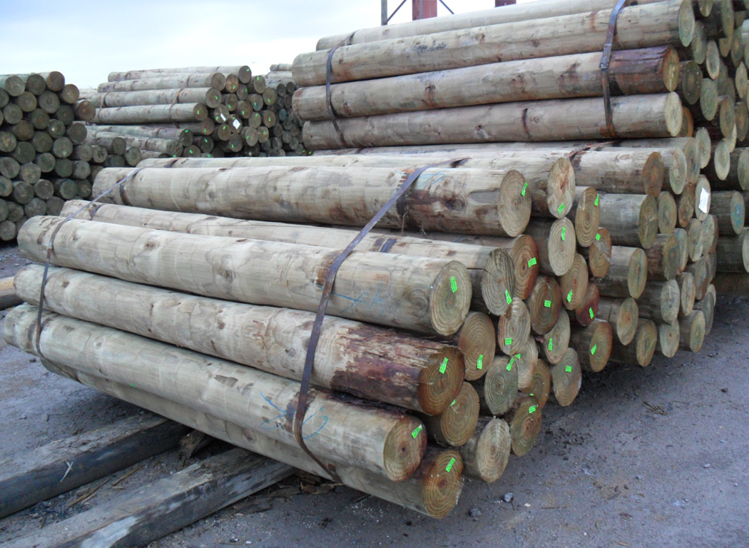 Roundwood and Treated Outdoor Products